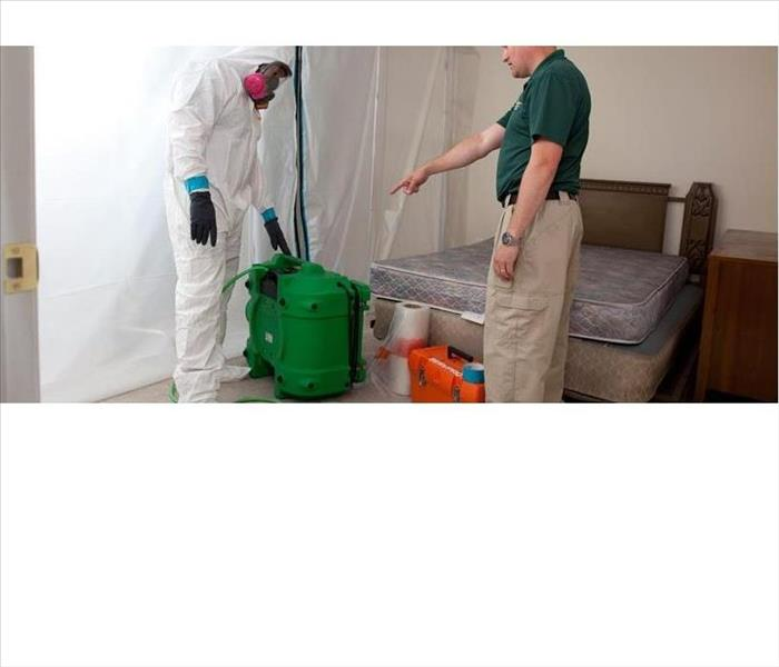 Mold Remediation Managing Mold in Marshall